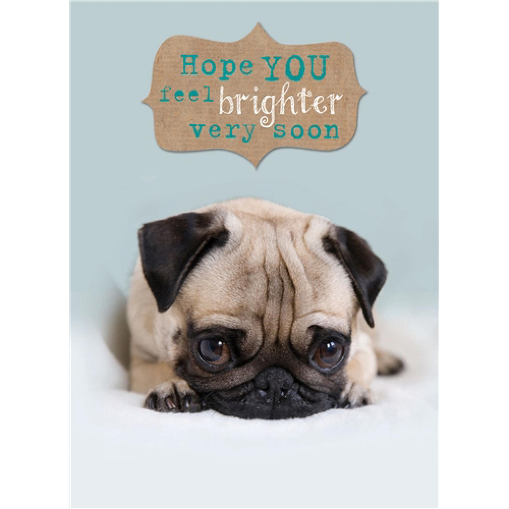 Get Well Soon Card Cute Pug