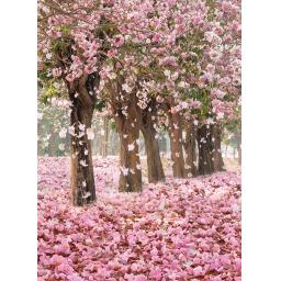 Beautiful Blanks Card - Blossom Trees