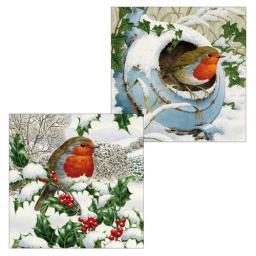 Luxury Christmas Card Pack - Robins Galore