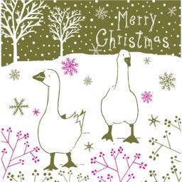 RSPB Small Square Christmas Card Pack - Christmas Stroll
