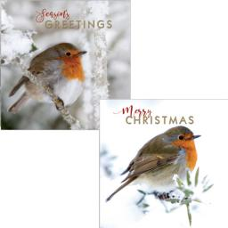 Luxury Christmas Card Pack - Festive Robins