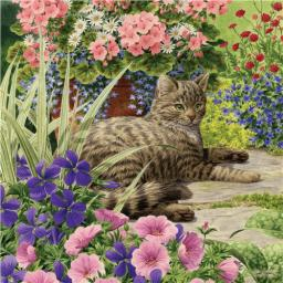 Square Jigsaw - Cat Lazy Summer Days