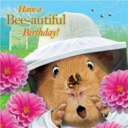 Crazy Crew Card - Bee-Autiful Birthday (Birthday)