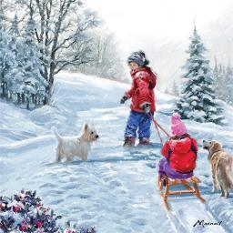 Charity Christmas Card Pack - Winter Sledging