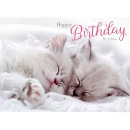 Animal Birthday Card - Sleepy Kittens