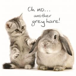 Pet Pawtrait Card - Grey Hares (Birthday Card)