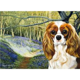 Pollyanna Pickering Card - Cavalier King Charles Bluebell