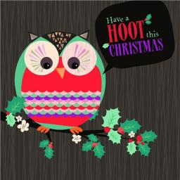 Charity Christmas Card Pack - Holly & The Owl