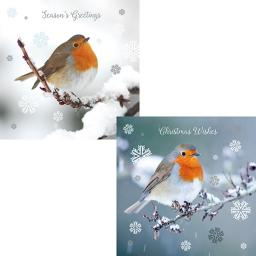 Luxury Christmas Card Pack - Rockin' Robins