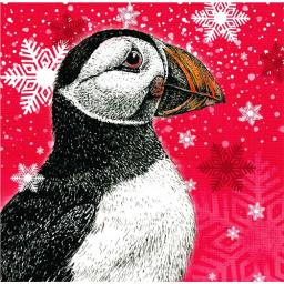 RSPB Small Square Christmas Card Pack - Puffin In Snow