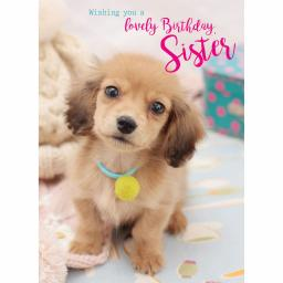 Family Circle Card - Cute Dachshund Pup (Sister)