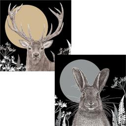 RSPB Luxury Christmas Card Pack - Christmas Moonlight