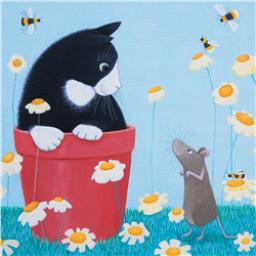 Ailsa Black Card Collection - Black & White Kitten 'Daisy Games'