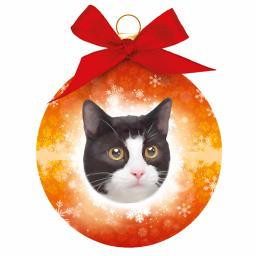 Baubles - Black & White Cat