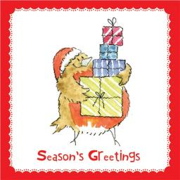 RSPB Small Square Christmas Card Pack - Santa's Little Helper