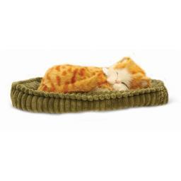Precious Petzzz - Ginger Tabby Cat
