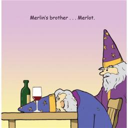 Twizler Card - Merlin Merlot