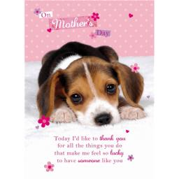 Mother's Day Card - Soppy Puppy