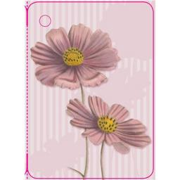 Gift Tags - Cosmos Daisy (Kew Botanical Gardens)