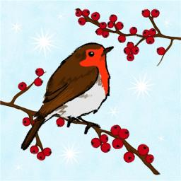 RSPB Small Square Christmas Card Pack - Robin On Blue