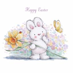 Easter Card Pack - Bunny & Daffodil