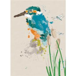 RSPB Card - Kingfisher