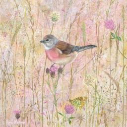 Enchanted Wildlife Card - Linnets