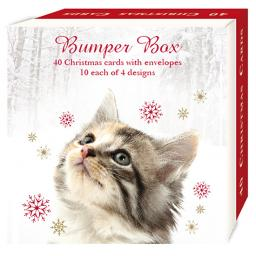 Assorted Christmas Cards - Festive Felines