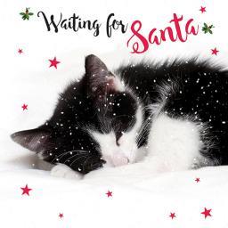Charity Christmas Card Pack - Waiting For Santa