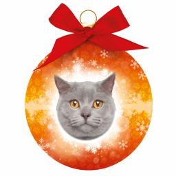 Baubles - British Short Haired Cat