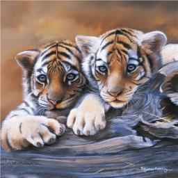 Pollyanna Pickering Collection - Tiger Cubs