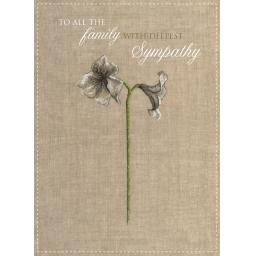 Sympathy Card - Deepest Sympathy (To All The Family)