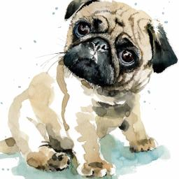 Puppy Dog Eyes Card Collection - Pug Pixie