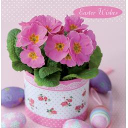 Easter Card Pack - Pink Primula