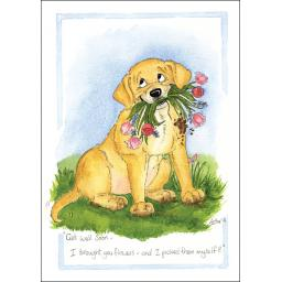 Alison's Animals Card Collection - I Brought You Flowers