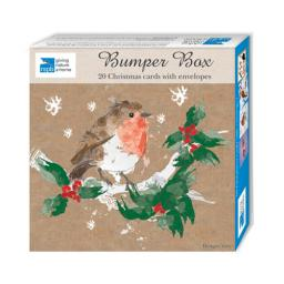 Assorted Christmas Cards - RSPB