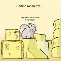 Twizler Card - Senior Moments