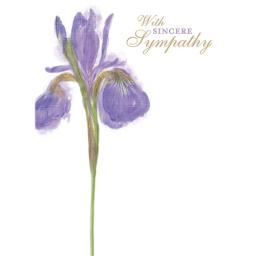 Sympathy Card - Painted Iris
