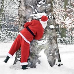 Charity Christmas Card Pack - Peeping Santa