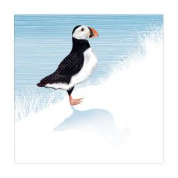 RSPB Nature Trail Card - Puffin
