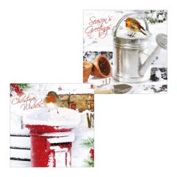 Luxury Christmas Card Pack - Robins Perch