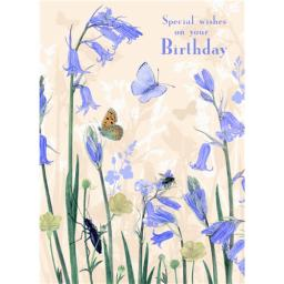 Marie Curie Card (Range 1) - Bluebells & Bugs