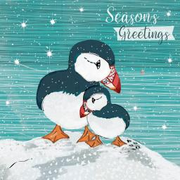 RSPB Small Square Christmas Card Pack - Puffin Cuddles