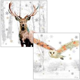 RSPB Luxury Christmas Card Pack - Woodland Wonderland