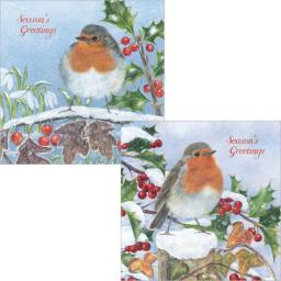 Luxury Christmas Card Pack - Christmas Perching