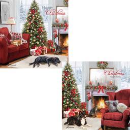 Luxury Christmas Card Pack - Christmas Scenes
