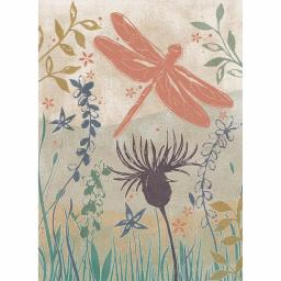 RSPB Card - Wild Garden - Dance Of The Dragonfly