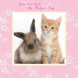 Mother's Day Card - Bunny & Kitten