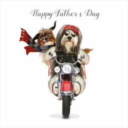 Fathers Day Card - Born To Be Wild