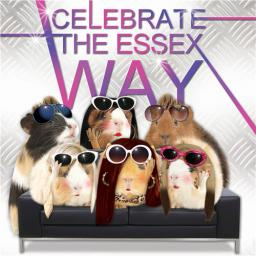 Crazy Crew Card - The Essex Way (Birthday)